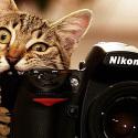 Цифров фотоапарат –  Фотографията е средство за изразяване и общуване