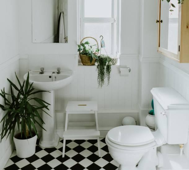 Как да изберем перфектната тоалетна чиния